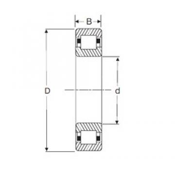 70 mm x 150 mm x 51 mm  SIGMA NUP 2314 cylindrical roller bearings