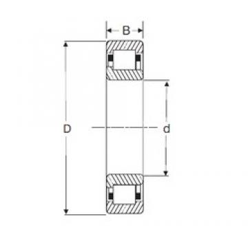75 mm x 130 mm x 31 mm  SIGMA NJ 2215 cylindrical roller bearings