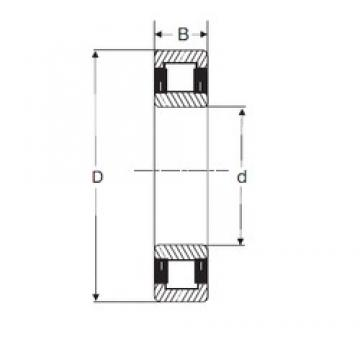 75 mm x 130 mm x 31 mm  SIGMA NU 2215 cylindrical roller bearings