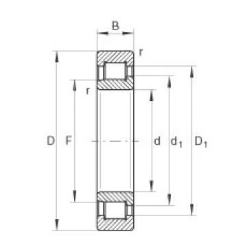 70 mm x 150 mm x 51 mm  INA SL192314 cylindrical roller bearings