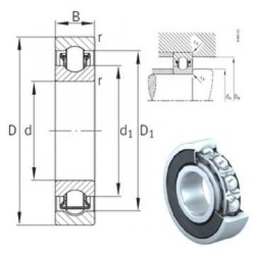 17 mm x 47 mm x 14 mm  INA BXRE303-2RSR needle roller bearings